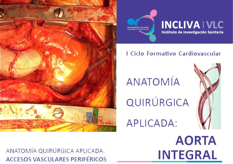 I Ciclo Formativo Cardiovascular. ANATOMÍA QUIRÚRGICA APLICADA ...